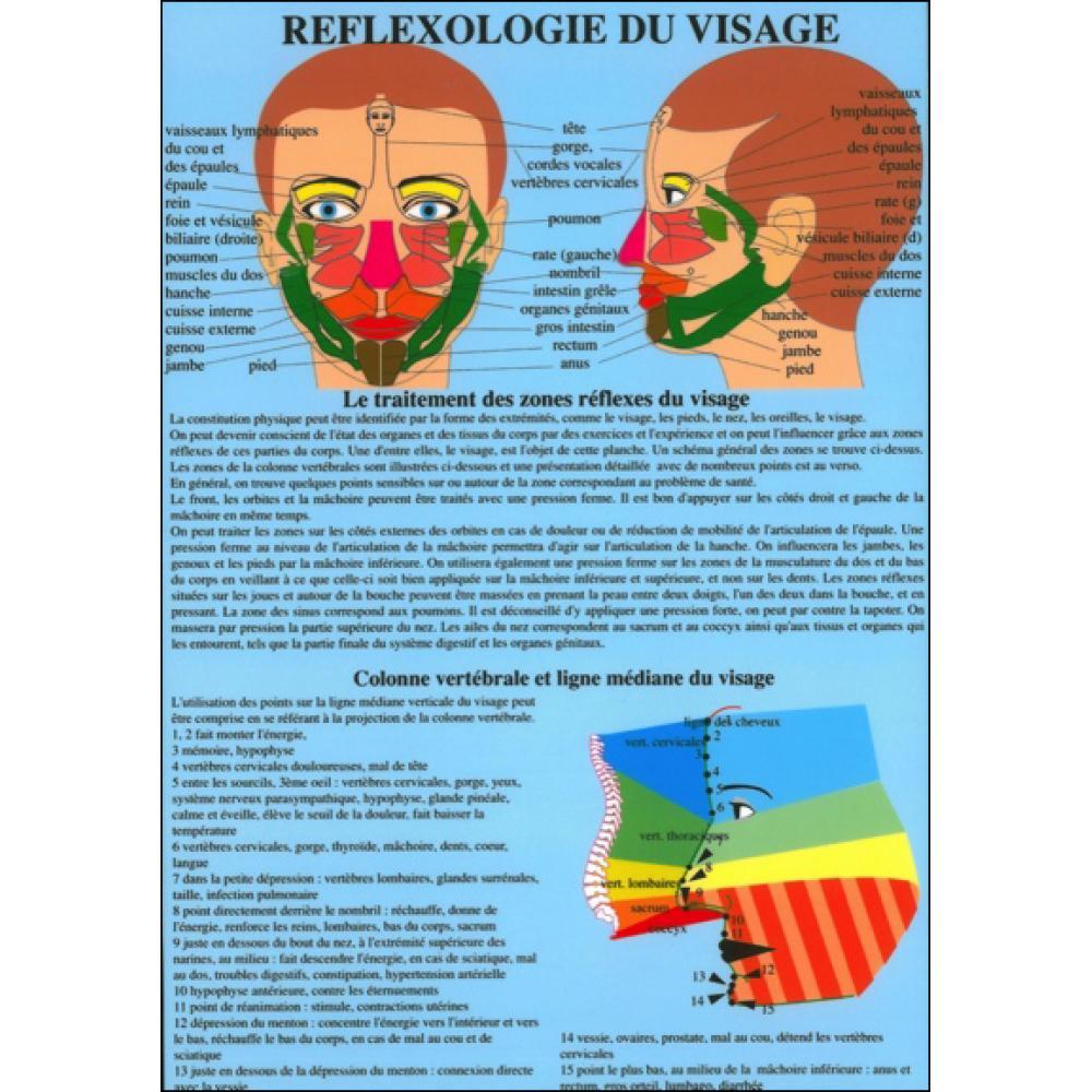 Planche-plastifiee-Reflexologie-du-visage-A4
