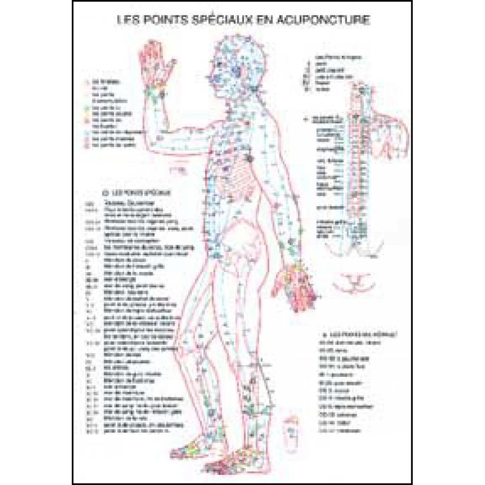 Planche-plastifiee-les-Points-speciaux-en-acupuncture-A4