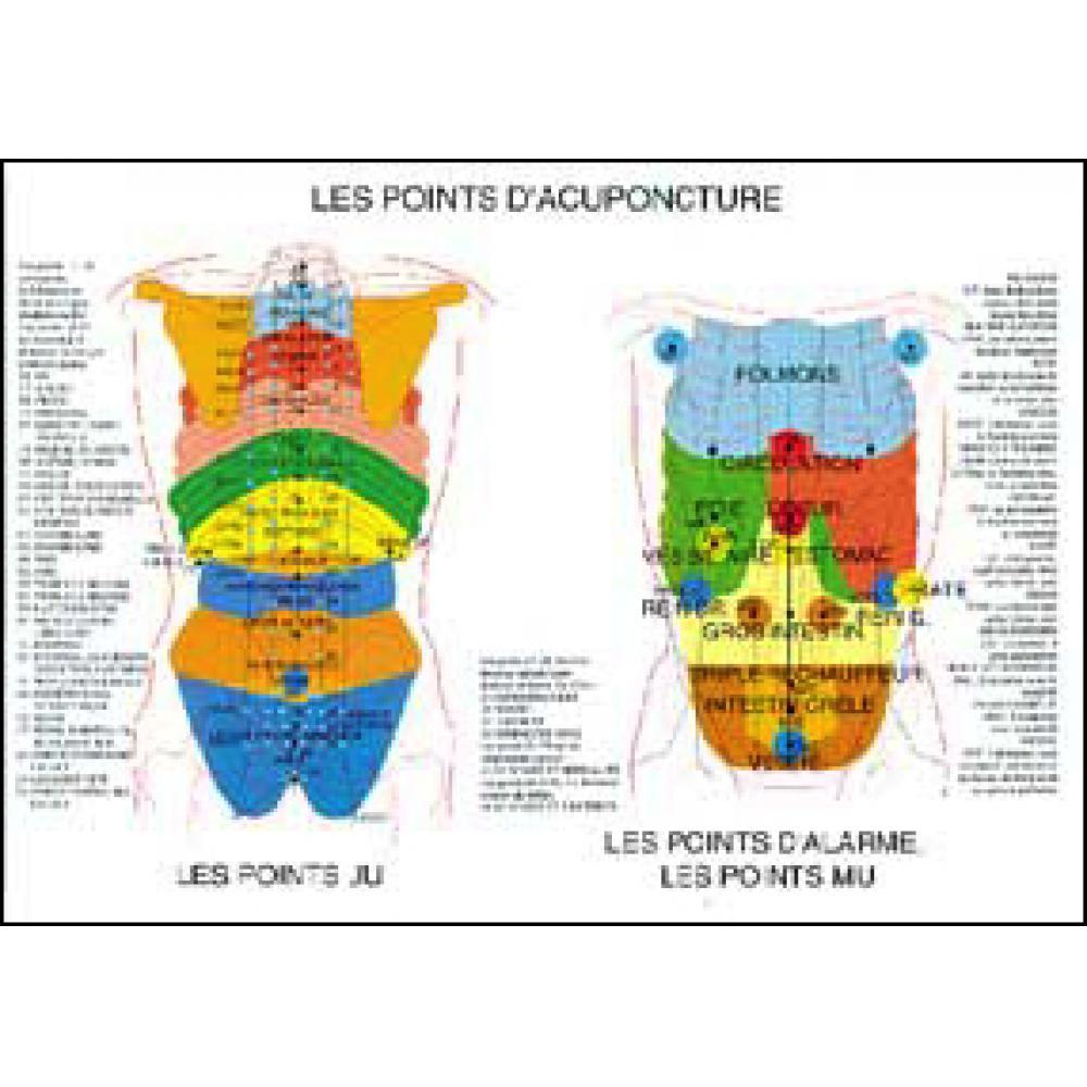 Poster-plastifie-Points-d-039-acupuncture-A2